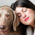 How Can I Communicate with My Pet – Part One?